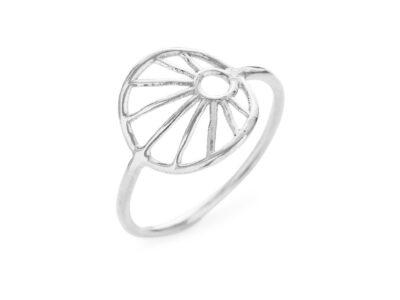 1695-1 Ring
