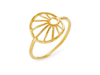 1695-2 Ring